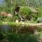 Kert 20 bungaló tóval