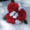 vörös rózsa rezgővel