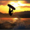 Wakeboard_photo_1