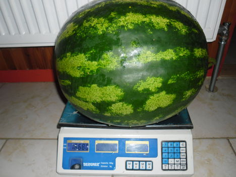 16,680 kg