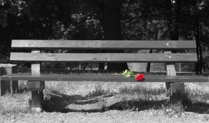 Életút - a rózsa örök - 4