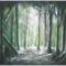 Sötét erdő 2