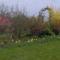 2011 kertem  Áprilisba