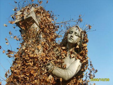 9706672788_Fiumei úti temető- Ősz 158