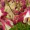 virág 2011ápr29 029