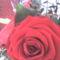 fia Erik ballagási virágai 10