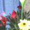 fia Erik ballagási virágai 35