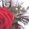 fia Erik ballagási virágai 48