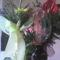 fia Erik ballagási virágai 7