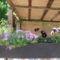 készülőfélben levő kerti pihenő virágokkal