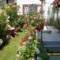 Terasz és kert
