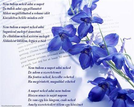 kék 10