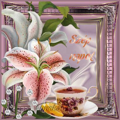 http://pctrs.network.hu/picture/1/9/_/szep_napot-004_1090183_2371.jpg