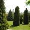 kerti zöldek