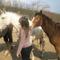 Encsi lovagol (49)