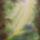 Erdei út (selyem festmény)