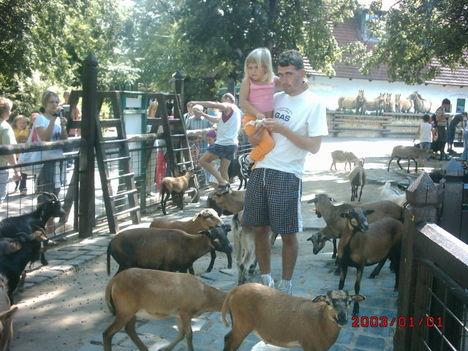 Állatkertben(2008)