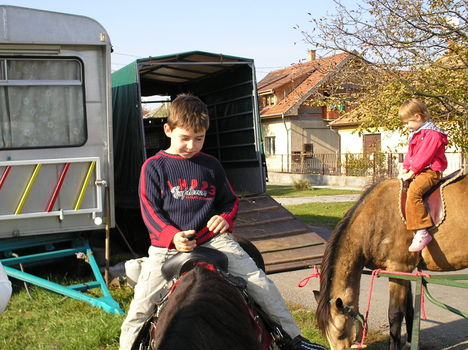 Dominik lovagol