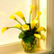 váza sárga virággal
