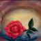Rózsaszál