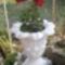 virágok 022