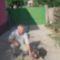 én és a kutyám, Zeus