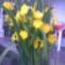 Mocsári liliom