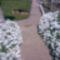 Tatárvirág