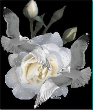 Békesség száljon a szívedben és áradjon át mindenkire akit szeretsz!