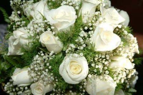 Fehér rózsák.