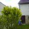 Tavasz 2009 005