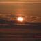 nap felkelte-2