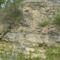 Kőbány 611