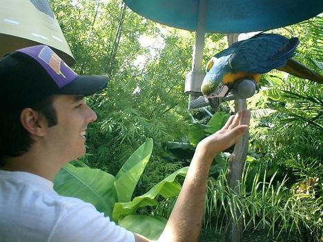 állatkertben2