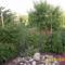 május a kertben7