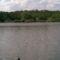 mézeshegyi tó