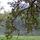 Jártamban-keltemben: Vácrátót- Ősz az Arborétumban