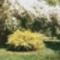tavaszi színek4