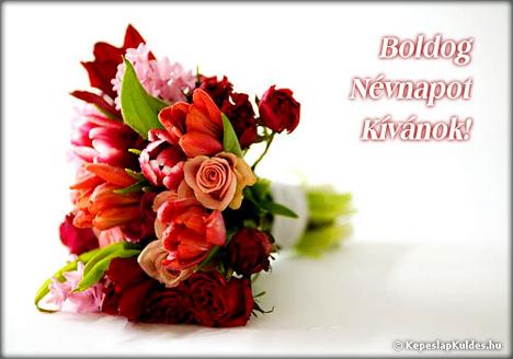vegyes szép virág