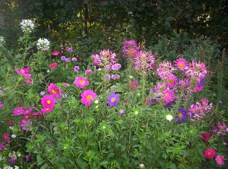 kerámia 501 nyári virágok