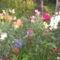 kerámia 512 nyári virágok