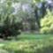 Kossuth téri park-2