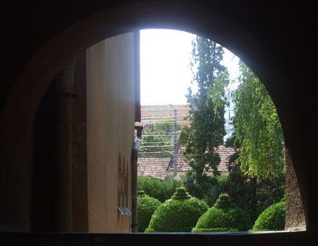 Kolozsvár 8