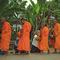 Luang Prabangi boncok