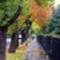 ősz-10