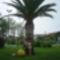 A Gorog tengerpart 9