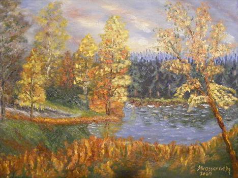 Őszi erdő2 003