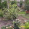 a kert is álomra szenderül