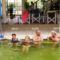 Ceglédi Strand és Gyógyfürdőben az MSZOSZ nyugdijasklubbal 29