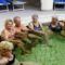 Ceglédi Strand és Gyógyfürdőben az MSZOSZ nyugdijasklubbal 4